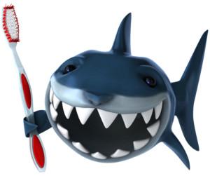 Requin et brosse dents